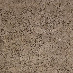 Seamless Coquina Stone